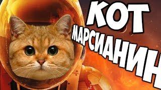 Запустили КОТИКА в Космос - MewnBase