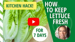 How to Keep Lettuce Fresh for 7 Days
