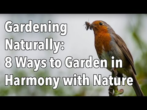 Gardening Naturally: 8 Ways to Garden in Harmony with Nature