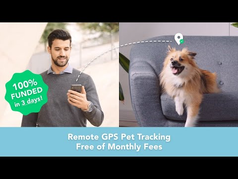 Findster Home: Track Your Pets' Location 24-7-GadgetAny
