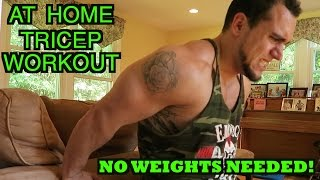 At Home Tricep Workout | No Weights Needed! by Anabolic Aliens