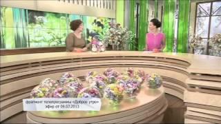 Идеальный ремонт у Зинаиды Кириенко Первый канал
