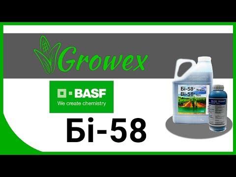 Би-58 от BASF