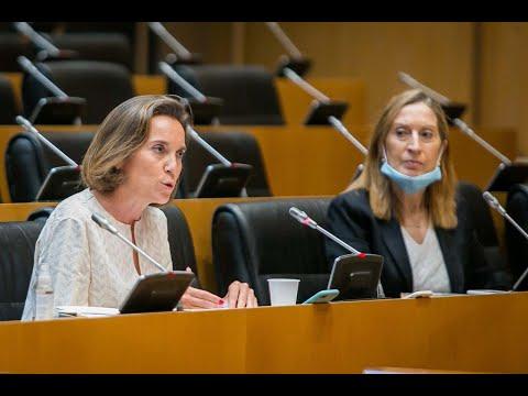 Gamarra exige al Gobierno transparencia en los datos de fallecidos, el número de test realizados y en cómo se va afrontar la fase de desescalada