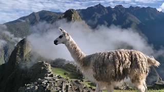 Hurtigruten: Südamerika
