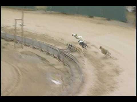 Race 28