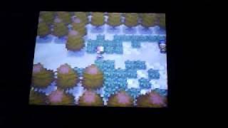 Mandibuzz  - (Pokémon) - How to Catch a Mandibuzz in Pokémon Black