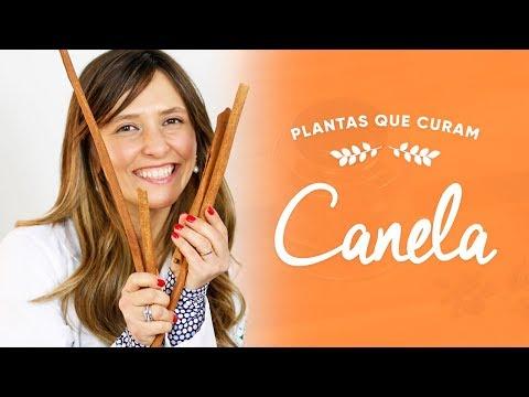 Imagem ilustrativa do vídeo: Benefícios da CANELA