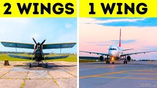 All Airplanes Actually Have Only One Wing