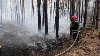 В Луганской области масштабные лесные пожары: минимум три человека погибли