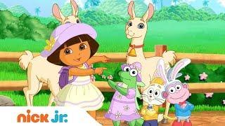 'Animal Fun' 🐾  Music Video W/ Dora The Explorer & Bubble Guppies | Nick Jr. Sings 🎤