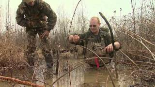 Nuisance beavers and how to control their population