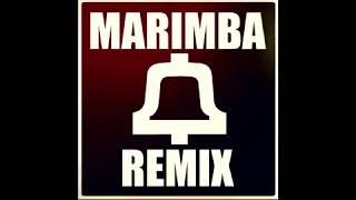 Dougie Style Marimba Remix