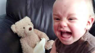 Siblings and Babies do Funny Things 🤣 | Cute Baby Funny Moments