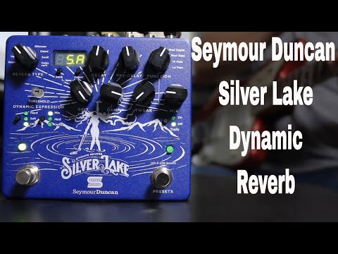 Silver Lake Dynamic Reverb Quick Listen Demo Video by Shawn Tubbs