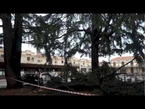 Tetti scoperchiati e alberi abbattuti a Gallarate