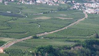 preview picture of video 'Apple orchards near Göflan (Italy)'