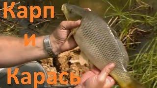 Диалоги о рыбалке ведущий валерий валерьевич