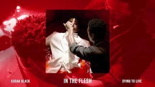 Kodak Black - In The Flesh [Official Audio]