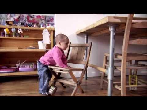 National Geographic  Внутри живого тела  2007 (видео)