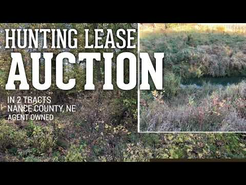335+/- Acres Nance County, NE 2 Tracts