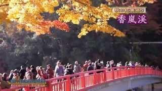 紅葉見頃「香嵐渓」観光愛知県豊田市