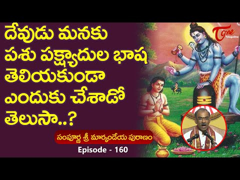 Markandeya Puranam #160 | దేవుడు పక్షుల భాష తెలీకుండ�