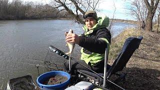 Фидер в марте на малой реке