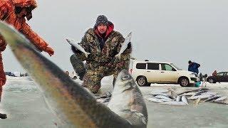 С днем рыбалка приморье