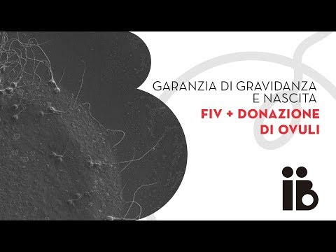Garanzia di gravidanza e nascita. FIV + donazione di ovuli