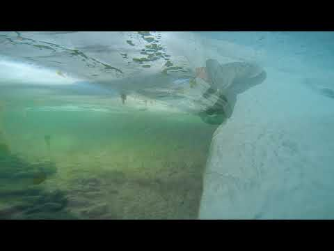 Isfiskeri efter fjeldørred
