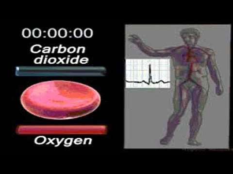 Démangeaisons de la peau dans les remèdes populaires de diabète