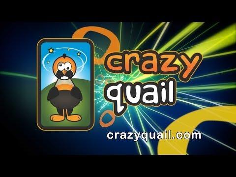 Crazy Quail Target Shooting Fun