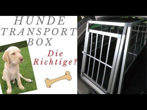 Hundetransportbox gekauft/Anschnallsystem/Infos und Tipps/passt sie rein ?Familyvlog