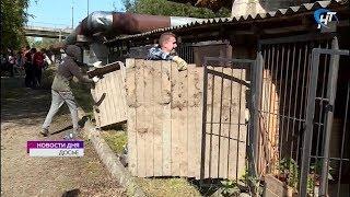 Новгородские общественники считают, что приют для бездомных животных должен иметь форму МУПа