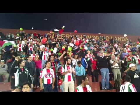 """""""Los Baisanos Palestino-Zamora"""" Barra: Los Baisanos • Club: Club Deportivo Palestino"""