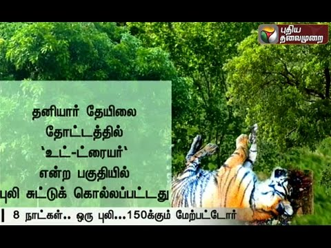Efforts-taken-to-get-rid-of-the-tiger-at-Devarsolai