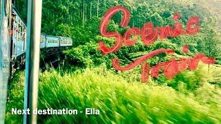 Sri Lanka, Scenic Tain (Pinnawalla, Kandy, Hatton, Ella then Colombo)