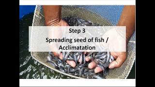 biofloc fish farming training in bangladesh - Kênh video