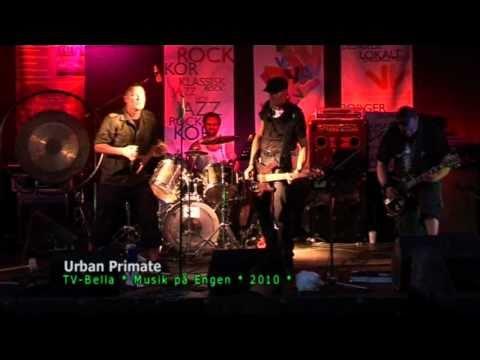 Urban Primate