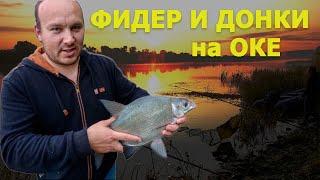 Где ловить на фидер в московской области