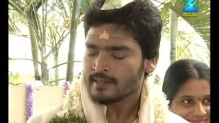 Varudhini Parinayam | Telugu Tv Serial | Ravi Krishna, Chandana | EP - 255 | Best Scene | Zee Telugu