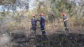 preview picture of video 'Protezione Civile Grottaferrata incendio oliveto'