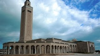 preview picture of video 'TUNISIA  Tunisi, Kairouan, la Moschea del Barbiere, La Grande Moschea, Nefta,Touzer'