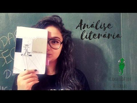 VIDAS SECAS | ANÃLISE LITERÃRIA (vestibular)