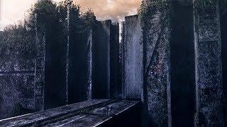 【喵嗷污】为躲避地球上疯狂进化的新物种,人类躲入高墙内,再出去却见到可怕怪物