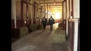 preview picture of video 'Brigade équestre de Blois'