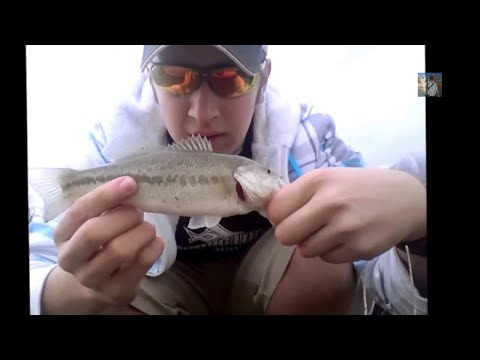Spring Bass Fishing – Salem Pond – Fishing with Adam
