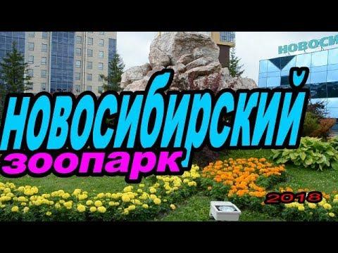 Новосибирский зоопарк.Novosibirsk zoo