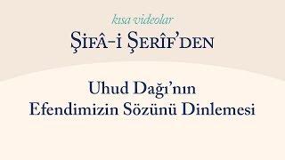 Kısa Video: Uhud Dağı'nın Efendimizi Dinlemesi